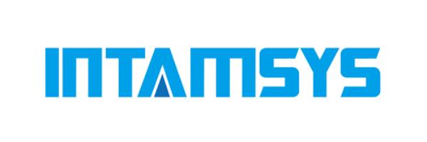 Intamsys Technology Co. Ltd.-ロゴ